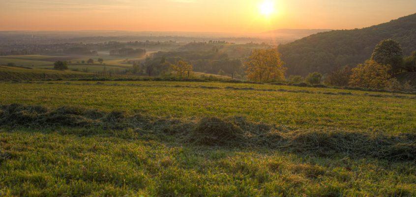 Sonnenaufgang über der Hohenloher Ebene