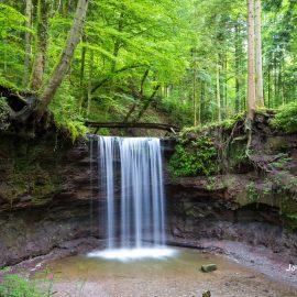 Sommer am Hörschbach